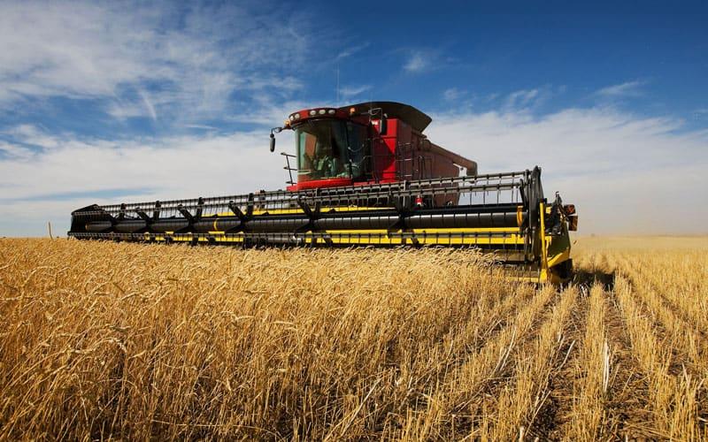 Agricultural Assets
